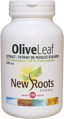 olive-leaf-extract-500mg-120c id 18140